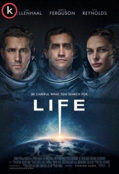 Vida-Life