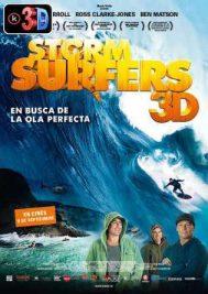 Storm Surfers (3D)