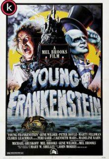El jovencito Frankenstein (HDrip)