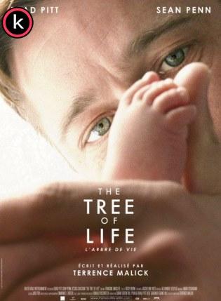 El árbol de la vida (DVDrip)