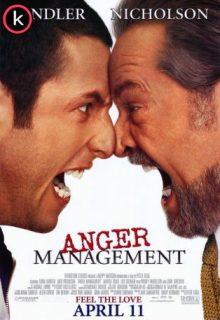 Ejecutivo agresivo (DVDrip)