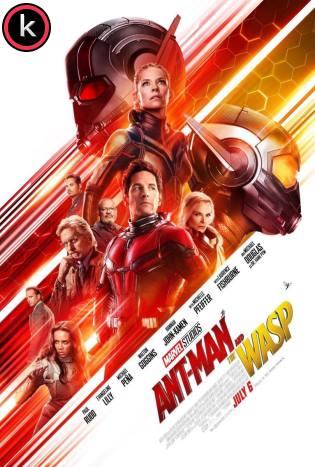 Ant-man y la Avispa (HDrip)