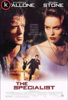 El especialista (DVDrip)