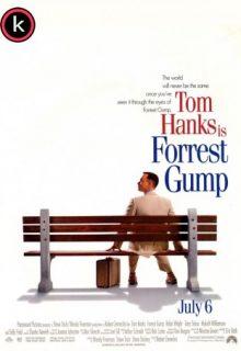 Forrest Gump (DVDrip)