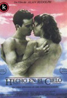 Hecho en el cielo (DVDrip)