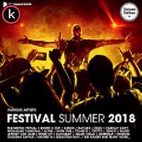 Festival Summer 2018 (1) torrent