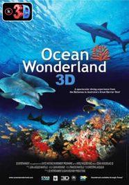 Ocean Woderland 3D