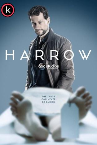 Serie Harrow - temporada torrrent