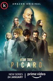 Star Trek Picard T1 (HDTV)
