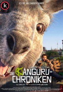 Die kanguru Chroniken por torrent