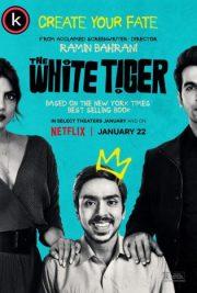 Tigre blanco por torrent