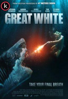 Tiburon blanco por torrent
