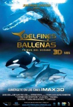 Delfines y ballenas (3D)