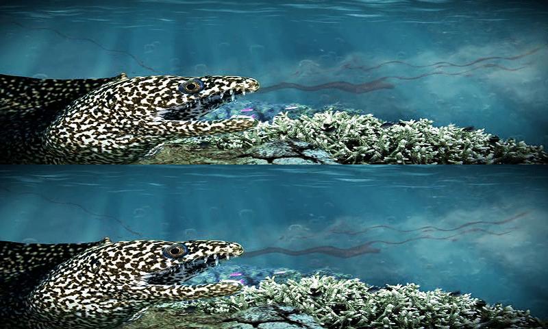 Depredadores del Oceano