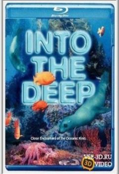 Into the Deep
