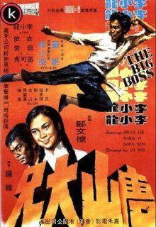 Karate a muerte en Bangkok - Torrent